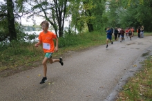 Cross saint louis - TOURNON